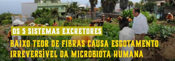 Esgotamento da microbiota