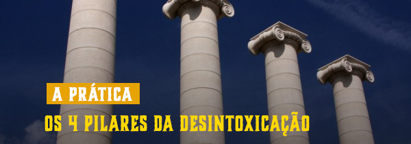 4 pilares da desintoxicação