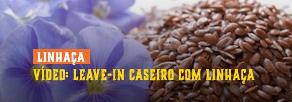Leave-in Caseiro com Linhaça