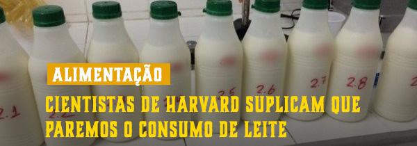 Cientistas de Harvard Suplicam que paremos o consumo do leite