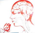http://www.docelimao.com.br/images/aromaterapia.jpg