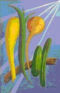 http://www.docelimao.com.br/images/capa-crus.JPG