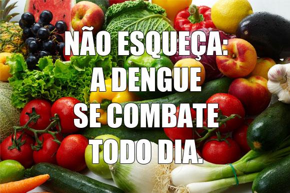 http://www.docelimao.com.br/images/DENGUE.jpg