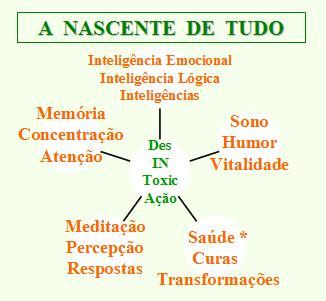 http://www.docelimao.com.br/images/desintoxicacao-nascente-tudo.JPG