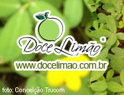 Doce Limao