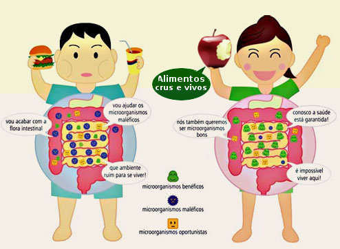http://www.docelimao.com.br/images/figura-intestinos2.jpg