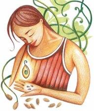 http://www.docelimao.com.br/images/semente.jpg