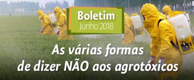 Boletim Junho 2018