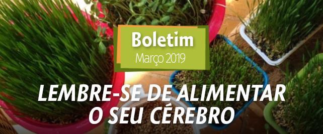 Boletim Março 2019