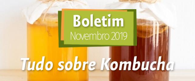 Boletim Novembro 2019